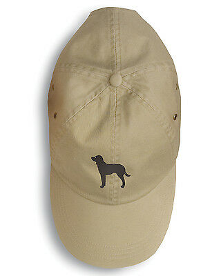 American Water Spaniel Embroidered Baseball Cap