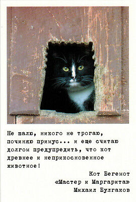 CAT BEGEMOTH and his sayings from THE MASTER AND MARGARITA Modern Russian card