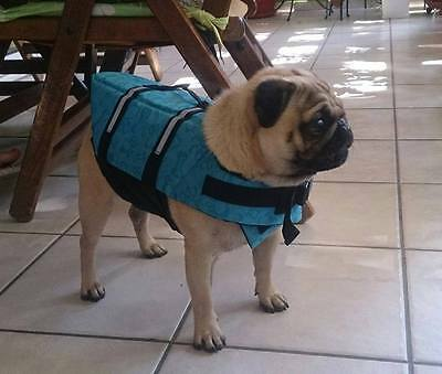 Pet Dog Puppy Life Jacket Life Vest Safety for Swimming