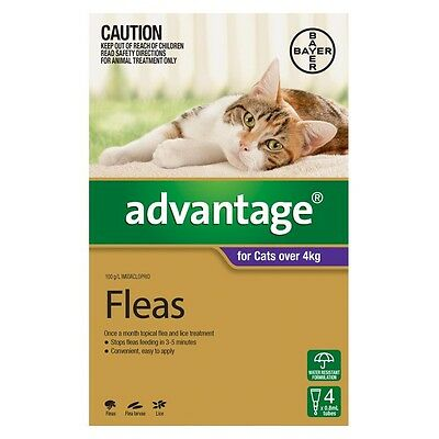 Advantage FLEA CONTROL TREATMENT For Cats Over 4kg PURPLE*German Brand-4 Or 6Pcs