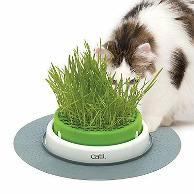 Catit Senses 2.0 Grass Planter NATURAL FIBRE for cats & cover prevents digging