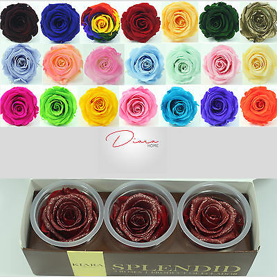 3 Red with Golden dust Rose Preserved 100%  Natural Real Flower last 3 years