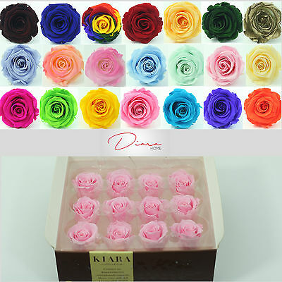 12 Bridal Pink Rose buds Preserved 100%  Natural Real Flower last appr 3 years