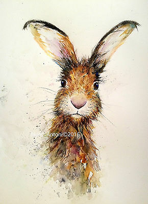 Hare Print From Original Watercolour By Nancy Antoni Art Paintings A3