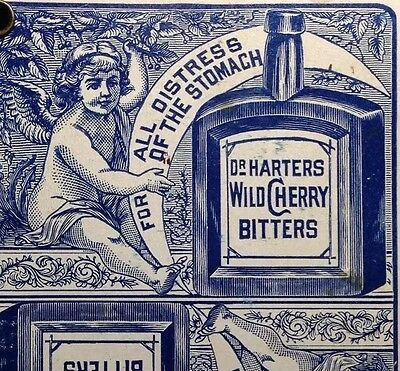 1881 Dr. Harters Bitters Fabrique Playing Cards Counter / Wild Cherry Bottles