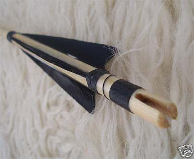 Traditioneller Pfeil /arrows Without Plastic Nock