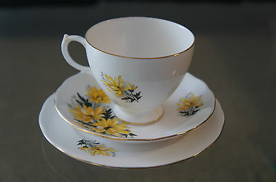 BEAUTIFUL ROYAL VALE ENGLISH BONE CHINA TEA CUP SAUCER PLATE TRIO           Gift