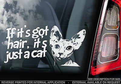 Sphynx - 'If it's got hair, it's just a Cat' - Car Window Sticker - Sign Gift
