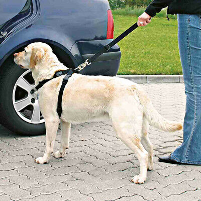 VETIQ TOILET TRAINING AID FOR DOGS & PUPPIES effective for indoor & outdoor use