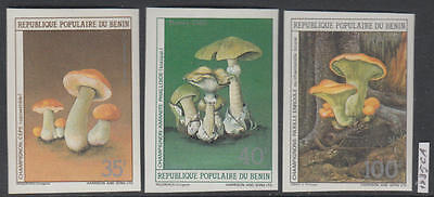 XG-AL356 BENIN - Mushrooms, 1985 Nature, 4 Values Imperf. MNH Set