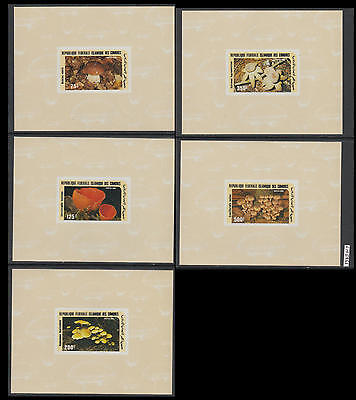 XG-AL505 COMOROS IND - Mushrooms, 1980 Nature, 5 Deluxe Proof Imperf. MNH
