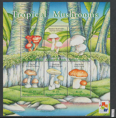 XG-AL508 ANTIGUA & BARBUDA IND - Mushrooms, 2001 Tropical Nature Trees MNH Sheet