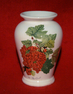 Portmeirion Vase *pomona -  The Red Currant* Made In England