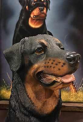 Rottweiler Collectible Resin Statue Figure 13""