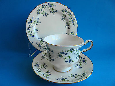 Queen Anne Sonata Forget - Me - Nots Trio Cup Saucer Plate
