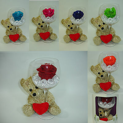 Gift Glass Diamonds Teddy preserved single Rose 100% natural last appr 3 years