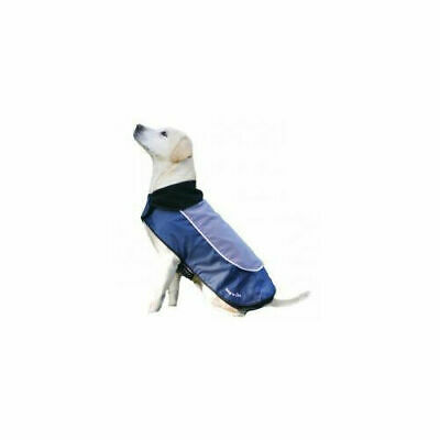 Night Bright LED Dog Jacket/Coat - Accessories - Dog - Night & Safety Wear