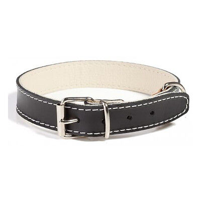 Doggy Things Plain Leather Dog Collar - Accessories  Dog Collars Leather