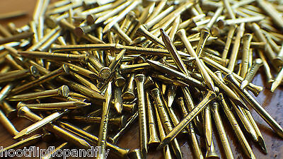 "50g 11/2"" 40mm ( APPROX 70 ) SOLID BRASS PANEL PINS NAILS TACKS HARDBOARD BEAD"