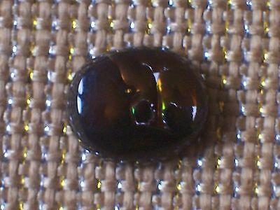 NATURAL FIRE AGATE OVAL CABOCHON w/ BEVELED EDGE -- 11 mm x 13½ mm
