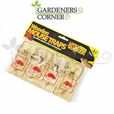 4 Pack Traditional Wooden Mousetraps Indoors Pest Mouse Trap Killer Control