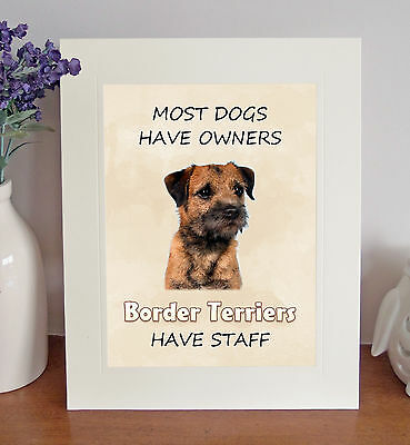 """Border Terrier 10""""x8"""" Free Standing """"Border Terriers Have Staff"""" Picture Mount"""