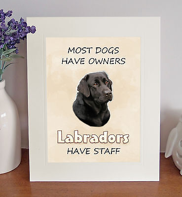 "Fridge Magnet /""Most Dogs Have Owners Labradors Have Staff!/"" Choc. Labrador"