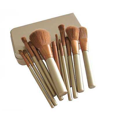 Pro Makeup Cosmetic 12pcs Eyeshadow Brushes Set Powder Foundation Lip Brush Tool