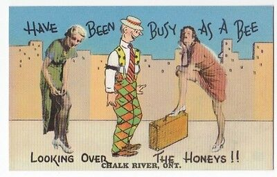 Comic Postcard - Looking Over Honeys - Risque - Chalk River Canada VG Unused