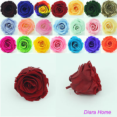 1 Red Rose bud Preserved 100%  Natural Real Flower last appr 3 years no water