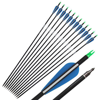 12Pcs 31'' Carbon Arrows for recurve and compoud bow Hunting Archery