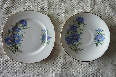 Royal Vale Ridgway England Cornflower Plate & Saucer Replacement Pieces