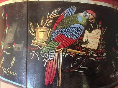 Arnotts Biscuit Tin~ RARE EARLY ARNOTT'S bISCUITS TIN~ PARROT