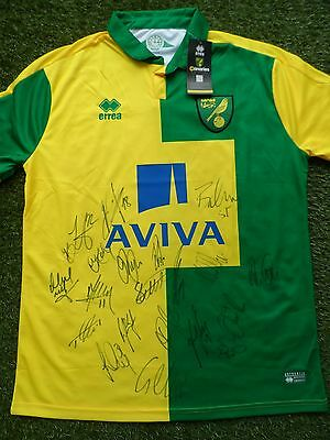 Norwich City Shirt Hand Signed by 2016/2017 Squad - 21 Autographs Jerome, Murphy