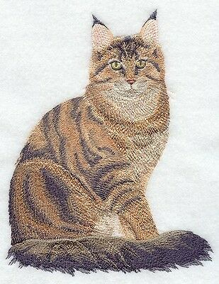 Finished Embroidery Maine Coon Cat