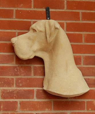 Great Dane Statue Side Wall Hung Head Life Size £65 Worcester Collection  20 ins
