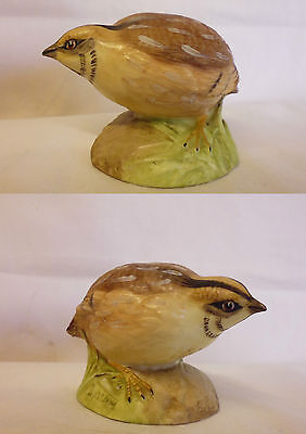 AYNSLEY WILD BIRDS COLLECTION. QUAIL. Hand Painted Figure. Bargain. Vintage. !!!