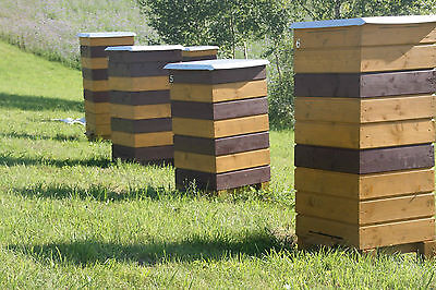Bee Hive Double Wall Profesional Beekeeping 1 Brood 4 Supers 50 Frames Assembled