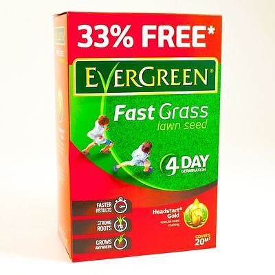 EVERGREEN FAST GRASS LAWN SEED  20 / 40 / 60 / 80 / 120 m2 COVERAGE 4 DAY GROWTH