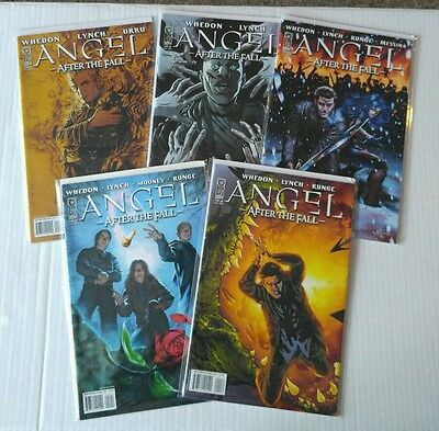 ANGEL: AFTER THE FALL Lot of 5  (IDW) #'s 2,8,10,11,12