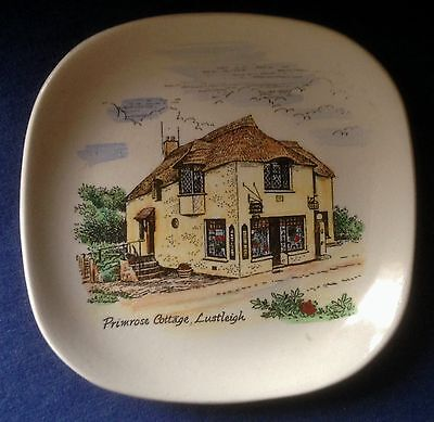 Vintage Lord Nelson Pottery. Small dish. Primrose Cottage Lustleigh.