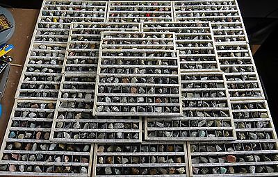 Large Rocks & Minerals Collection 1120 Pieces - 16 Trays