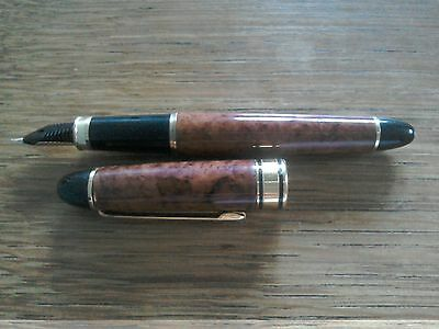 new fountain pen beautiful gift collectible