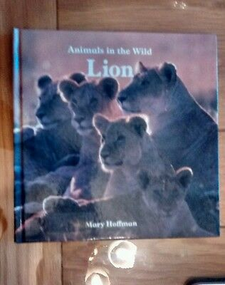 Lion by Mary Hoffman (Hardback, 1985) children's book