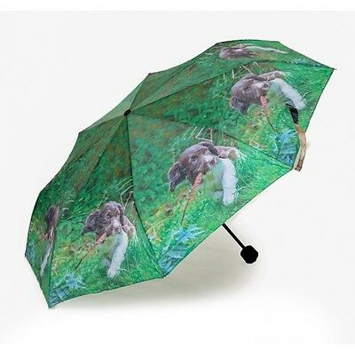 Up to Mischief Spaniel Puppy folding Umbrella by country Matters