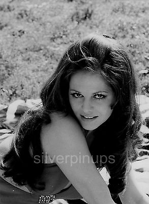 Orig 1960's CLAUDIA CARDINALE Stunning FASHION Portrait by ANGELO FRONTONI