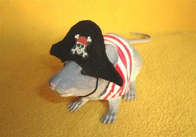 Pirate Costume for Rat from R.A.T.S.