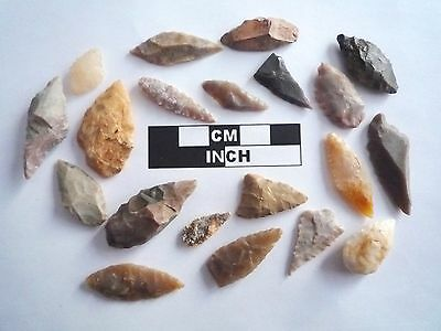 20 x Neolithic Arrowheads - Genuine Saharan Flint Artifacts - 4000BC (0476)