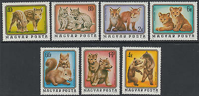 XG-D224 WILD ANIMALS - Hungary, 1976 Cubs Of Lions, Bears, Foxes, Boars MNH Set