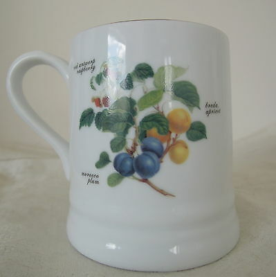 The Royal Horticultural Society Mug Fruits Pattern Apricot Plum and Raspberry